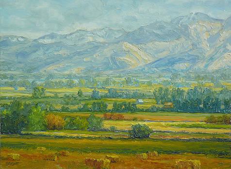 Goldflake Field by Lynn T Bright