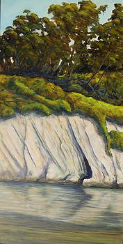 Goleta Slough the Cave by Jeffrey Campbell