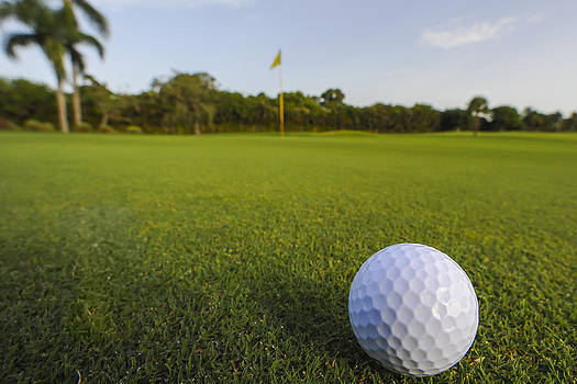 Golf Ball on Golf Course by M Cohen