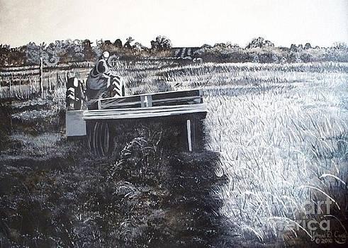 Gomez Farm Harvest by Yvonne Cacy