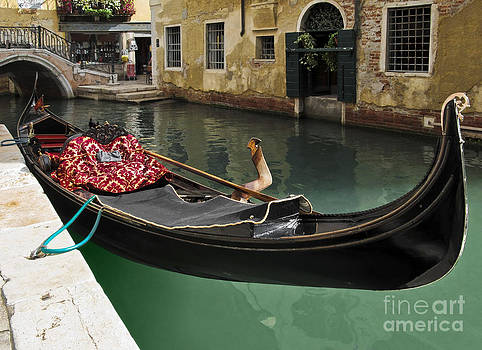 Gondola waiting for tourists in Venice by Kiril Stanchev