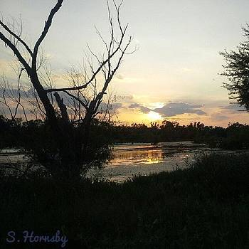 Good Evening! ! #sunset #sun #trees by Samantha Hornsby