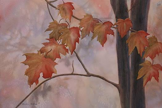 Good Morning Maple by Heather Gallup