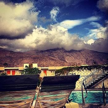 Good Morning Palm Springs! #acehotel by Brooke Kozlowski