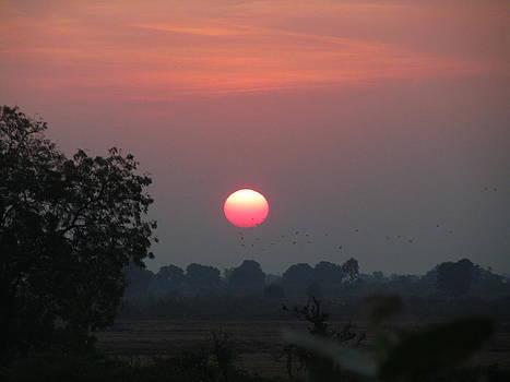 Good Morning by Paresh Bhanusali