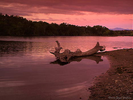 Joyce Dickens - Good Morning Sacramento River