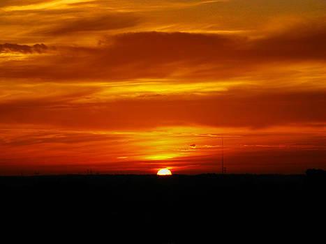 Good Morning Sunshine by Oscar Alvarez Jr