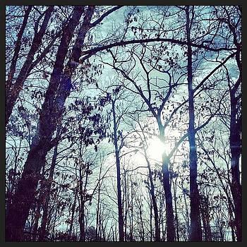 Good Morning, Sunshine! #sunshine by A Loving