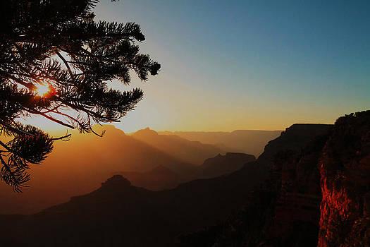 Good Morning USA by Tom Hard