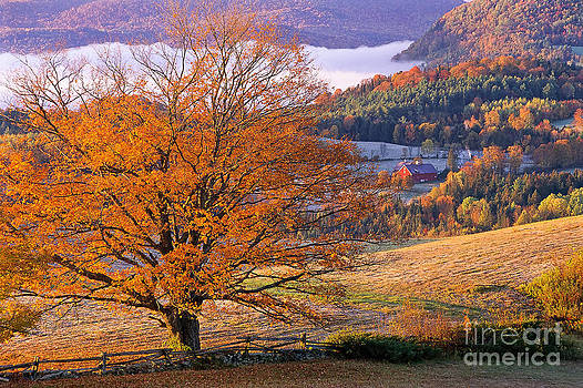 Good Morning Vermont by Alan L Graham
