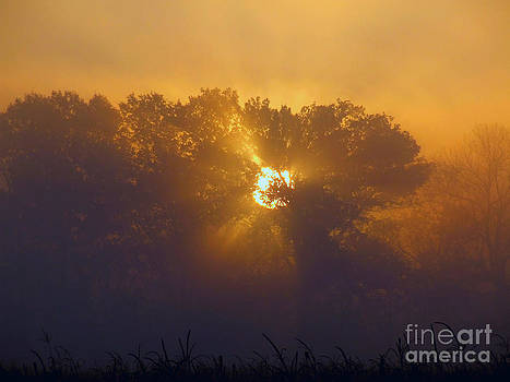 Scott B Bennett - Good morrning sun rise