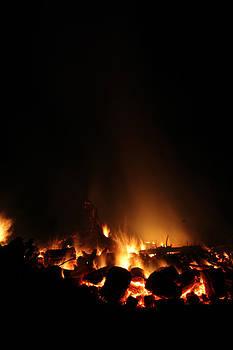 Good night for a bonfire by Connie Zarn