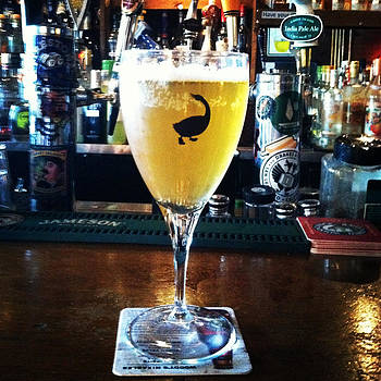 Goose Island Beer by Rosemary OBrien