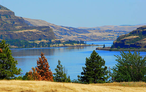 Gorge East by Mamie Gunning