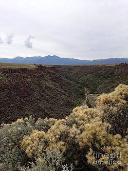 Gorge in Taos by Polly Anna