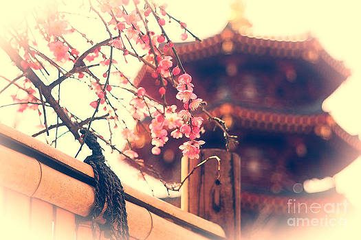 Beverly Claire Kaiya - Gorgeous Pagoda and Plum Blossoms with Bamboo Fence