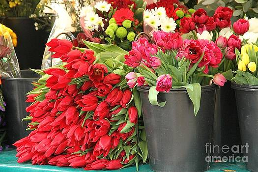 Gorgeous Red Tulips in Paris by Julia Willard
