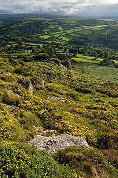 Gorse Tors and Fields by Pete Hemington