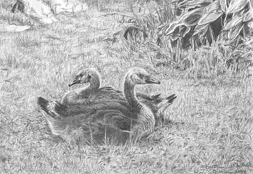 Goslings by Kathleen Walker