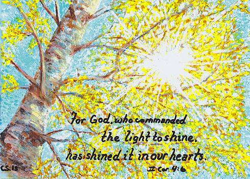 Got Light? by Catherine Saldana