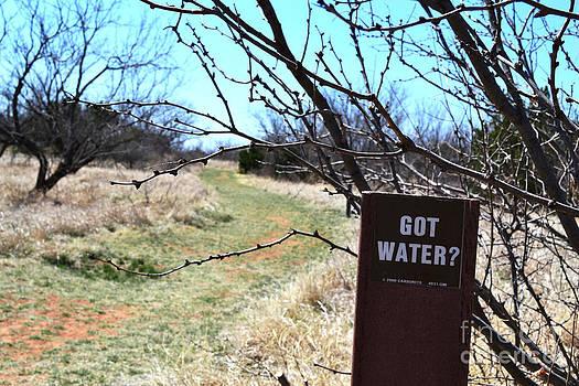 Got Water by Derry Murphy