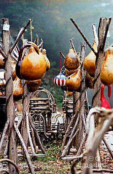 Gourds 2002 by Matthew Turlington