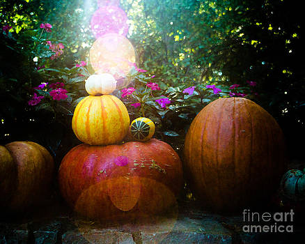 Sonja Quintero - Gourds in the Sun