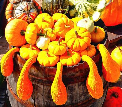Gourds on a barrel by Mick Flynn