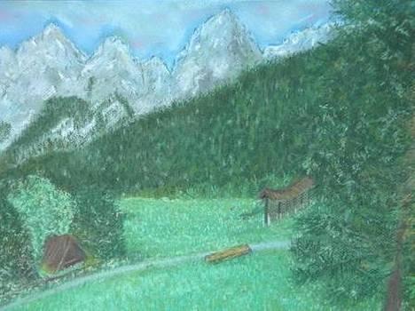 Gozd Martuljek Spik by Igor Kotnik