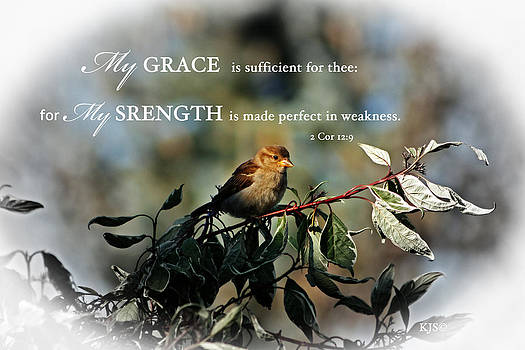 Grace by Kathy J Snow