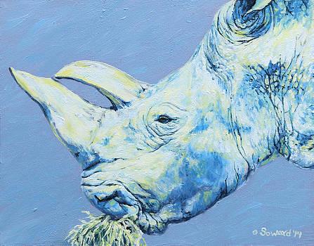 Gracie Rhino by Sarah Soward