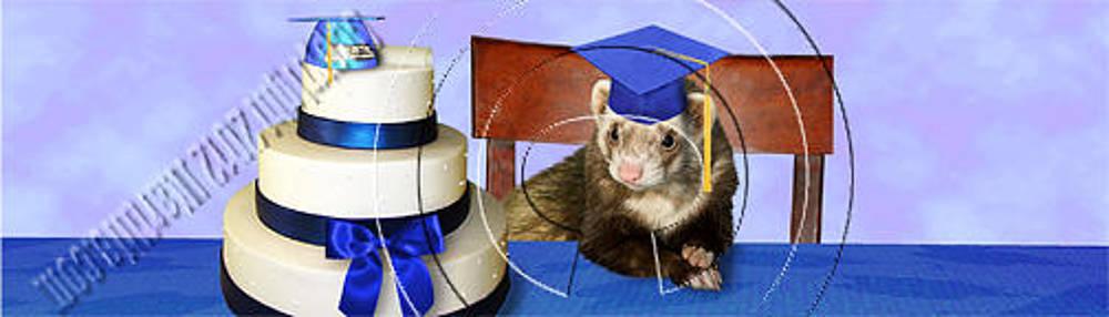 Jeanette K - Graduation Ferret # 541