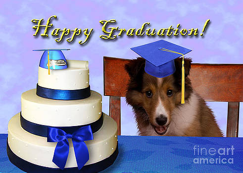 Jeanette K - Graduation Sheltie Puppy