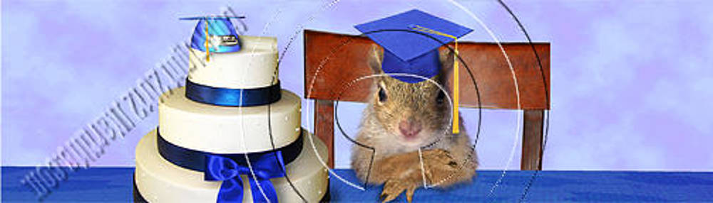 Jeanette K - Graduation Squirrel # 544