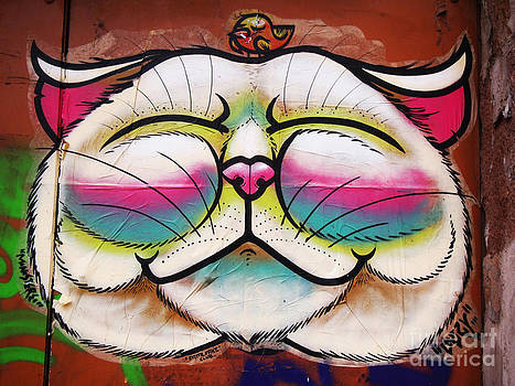 Graffiti Smiling Cat with Bird by Victoria Herrera