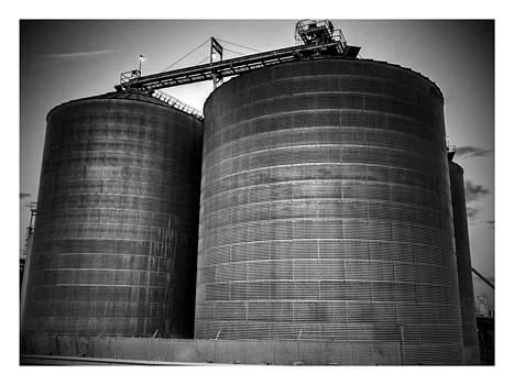 Grain Bins by Dustin Soph