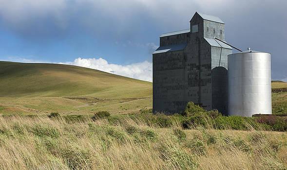 Mary Lee Dereske - Grain Elevator