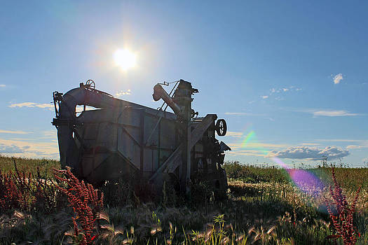 Grain Harvester by Gerald Murray Photography