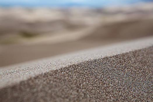 Grains of Sand by D Scott Clark