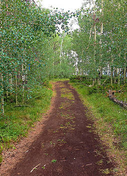 Robert Meyers-Lussier - Granby Trail
