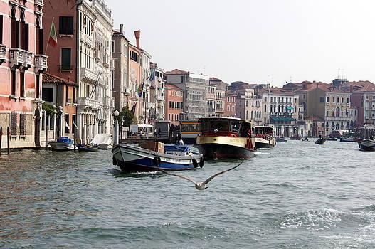 Grand Canal by Debi Demetrion
