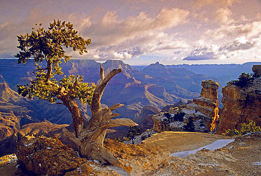 Dennis Cox WorldViews - Grand Canyon 3
