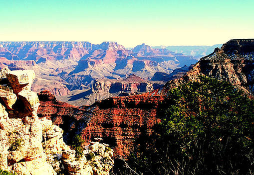 Grand Canyon 5  by Rebecca West