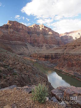 Grand Canyon by Adrienne Franklin