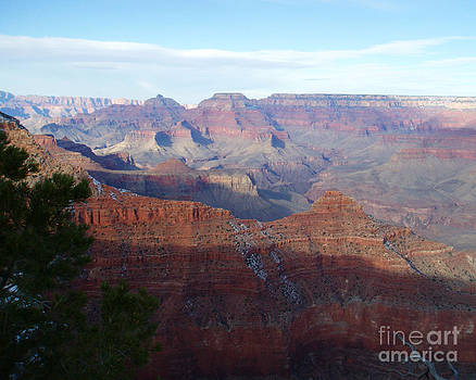 Grand Canyon Beauty by Janice Sakry