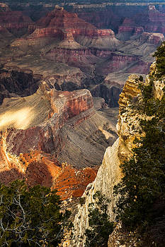 Grand Canyon Cliff Colors by Ed Gleichman
