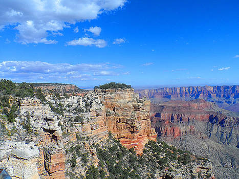 Grand Canyon North Rim by Broderick Delaney