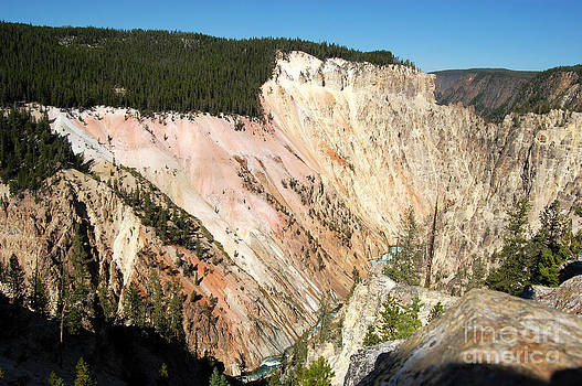 Grand Canyon of the Yellowstone by Susan Montgomery