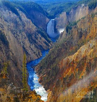 Grand Canyon Of Yellowstone National Park Wyoming by Kathleen Struckle