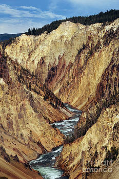 Rachel Barrett - Grand Canyon of Yellowstone